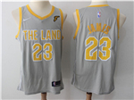 Cleveland Cavaliers #23 LeBron James Gray The Land Swingman Jersey